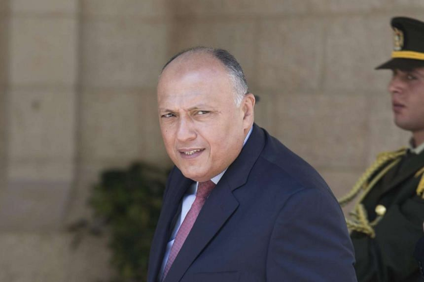 Egyptian Foreign Minister Sameh Shoukry (above) will be heading to Israel on Sunday (July 10) for a rare visit in which he is to meet Prime Minister Benjamin Netanyahu.