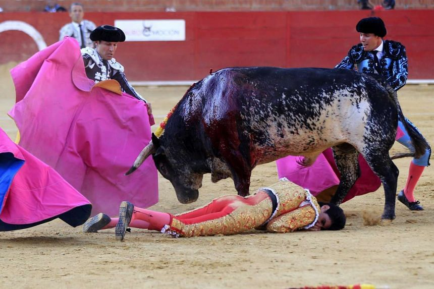 Spanish bullfighter Victor Barrio is gored during a bullfight held on the occasion of Feria del Angel in Teruel, Spain, on July 9.