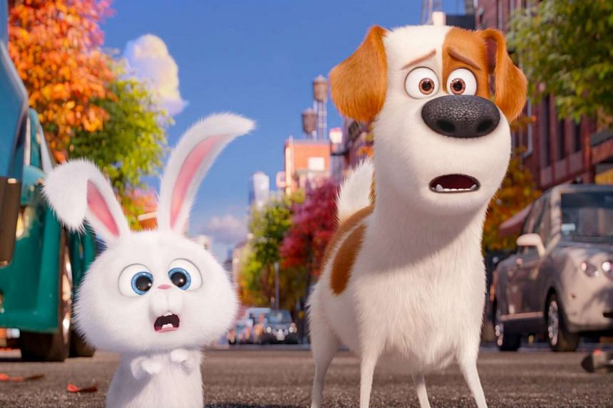 Terrier mix Max (Louis CK) and bunny Snowball (Kevin Hart) in The Secret Life of Pets. MUST CREDIT: Illumination Entertainment and Universal Pictures