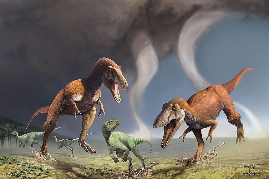 An illustration of two predatory dinosaurs named Gualicho shinyae hunting smaller bipedal herbivorous dinosaurs in northern Patagonia 90 million years ago.