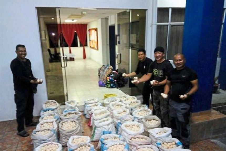 The seizure of turtle eggs with a street value exceeding RM30,000 (S$10,100) was the largest so far in Sabah.