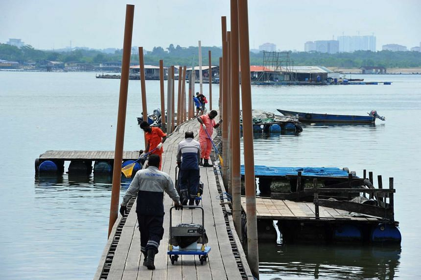 Workers pushing trolleys of dead fish along Lim Chu Kang jetty on July 18, 2016.