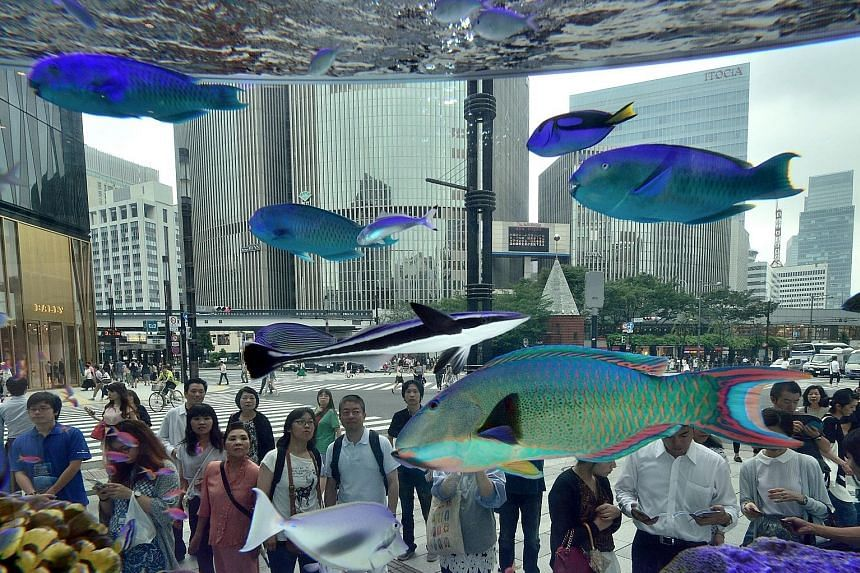 What has Tokyo got to offer visitors during the hot, hot days of summer? Shops, cafes and... a big tropical fish display, held in Ginza to celebrate Sony Building's 50th anniversary. The eye-catching fish, transported from Japan's southern island of