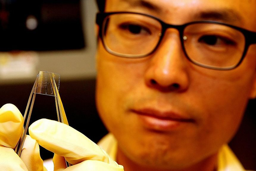 The discovery by Associate Professor Yang and his team takes the technology a step closer to fully flexible electronic devices, which can be applied to car and healthcare electronics, industrial management and military systems.