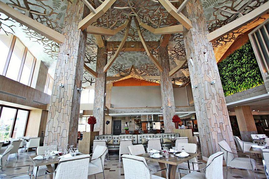 Forest, Resorts World Sentosa