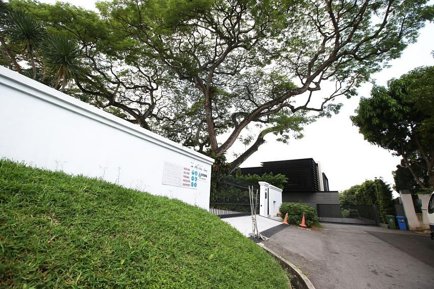 Ms Shi's neighbours - a couple with a young daughter - were worried about the dangers of dead branches falling from the old raintree in the posh Astrid Hill district.