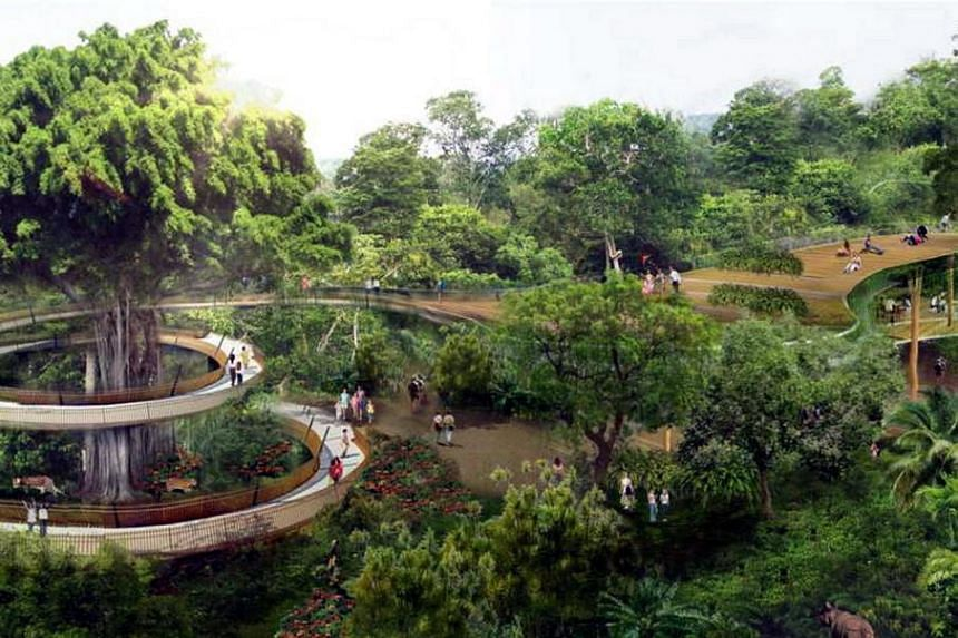 An artist's impression of the new Rainforest Park, which is part of the efforts by Mandai Safari Park Holdings to turn Mandai into a nature precinct.