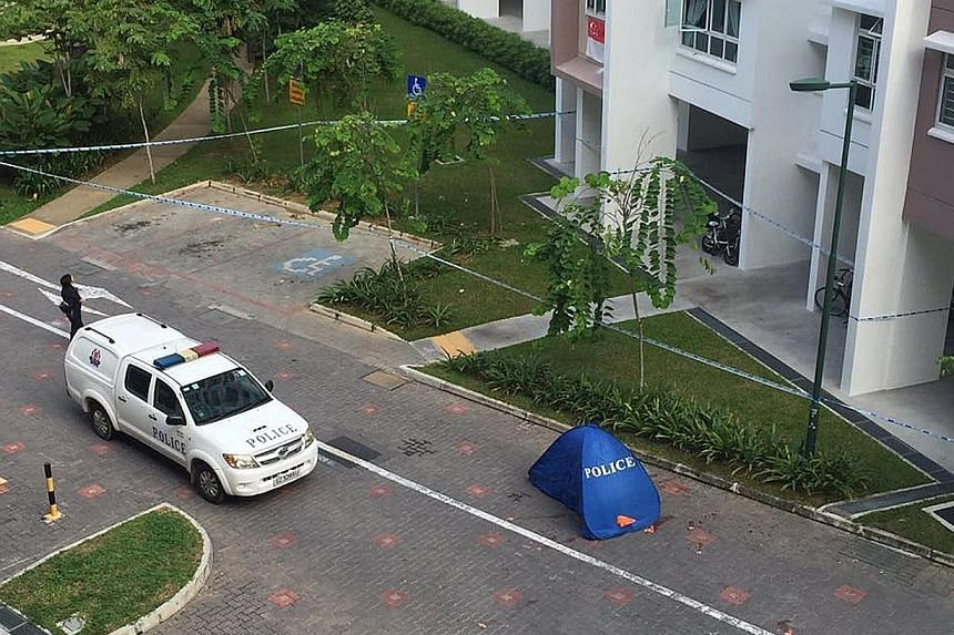 There were 409 reported suicides in Singapore last year, the lowest since 2012.