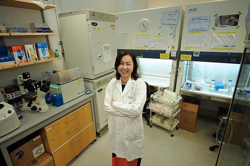 The path she chose was far from easy - her post-doctoral research in the US took her away from her family for four years - but Prof Lok found the will to continue because she was able to learn so much.