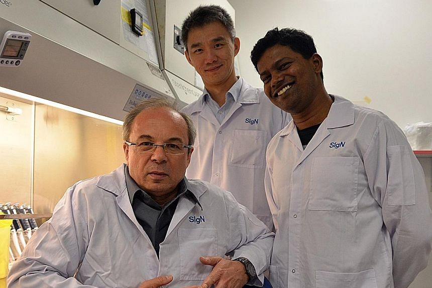 The team from A*Star's Singapore Immunology Network who are involved in the study on basophil anergy include (from left) Dr Olaf Rotzschke, Dr Kia Joo Puan and Dr Andiappan.