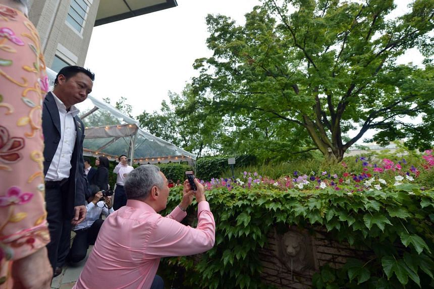PM Lee takes a photo of a tree that Mr S R Nathan planted at the Singapore embassy in Washington, DC, on July 31.