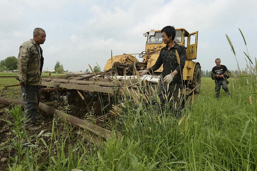 Mr Li Chengbin and his son, Mr Li Xin, on their 33ha spread in Russia's far east. They are among a growing number of Chinese peasants who have started turning previously unused Russian land into productive farms.