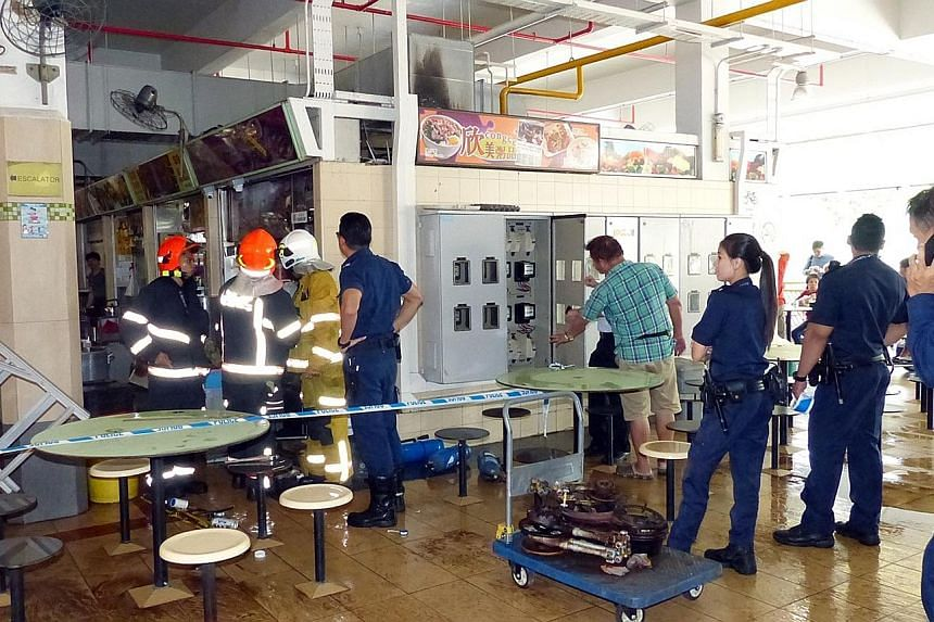 According to preliminary investigations, the flash fire at a stall in the Old Airport Road Food Centre yesterday morning might have been caused by repairs being carried out to the stall's gas supply, the SCDF said.