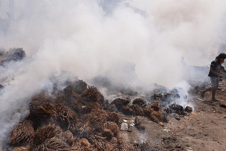 Indonesians burning oil palm kernels in Kandis, Riau province. The economic side of Brazil's success should also interest the palm oil and paper industries: even as Brazilian soya growers have effectively eliminated deforestation, they have doubled p