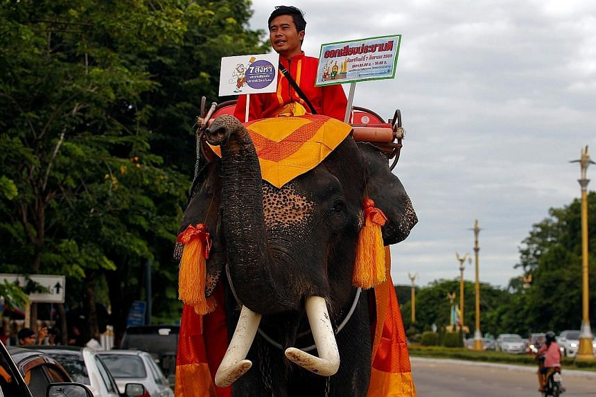 A mahout displaying placards during a campaign in Ayutthaya province, north of Bangkok, on Monday, ahead of Sunday's referendum.