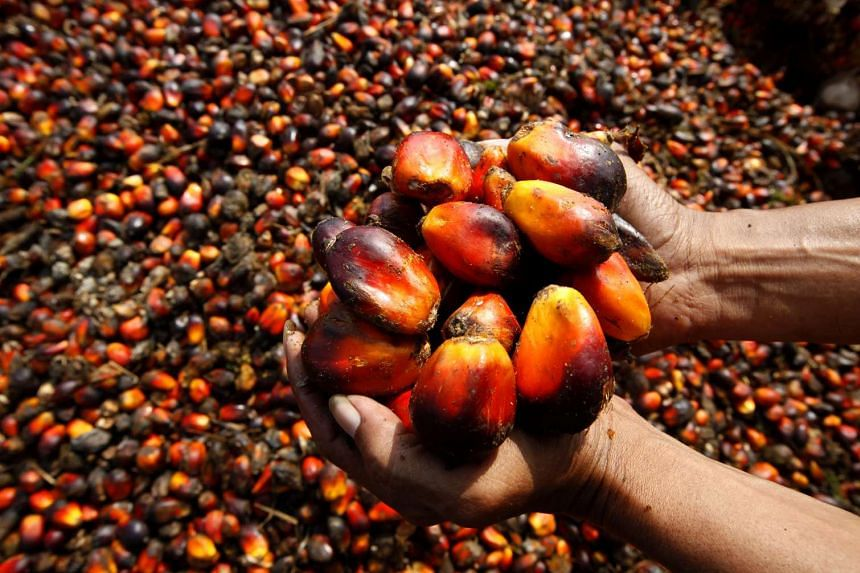 Bumitama Agri said in its exchange filing that palm oil prices will continue to be affected by the slowing global economy.