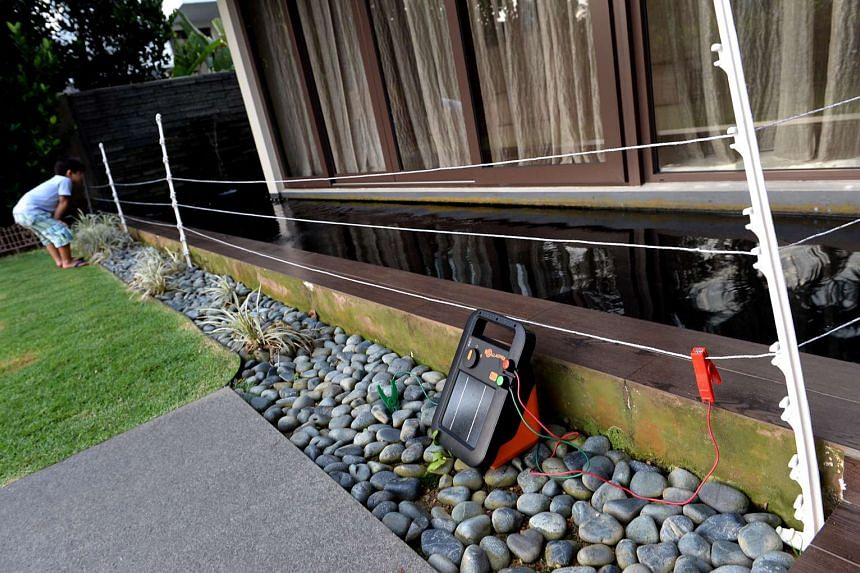 Ms Constance Cheng installed an electric fence surrounding her pond with motion sensor lights.