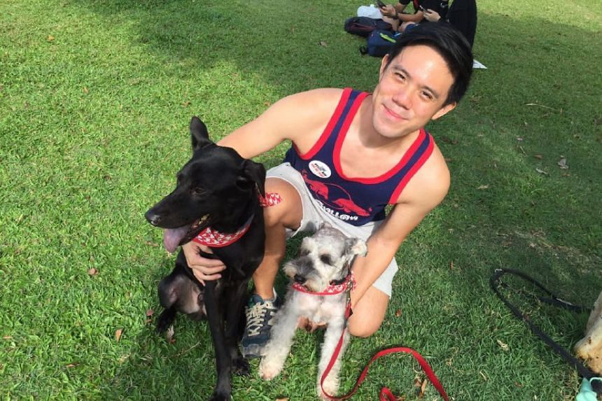 Mr Bryan Wong with his adopted dogs, Cole and Cory, outside the National Stadium.