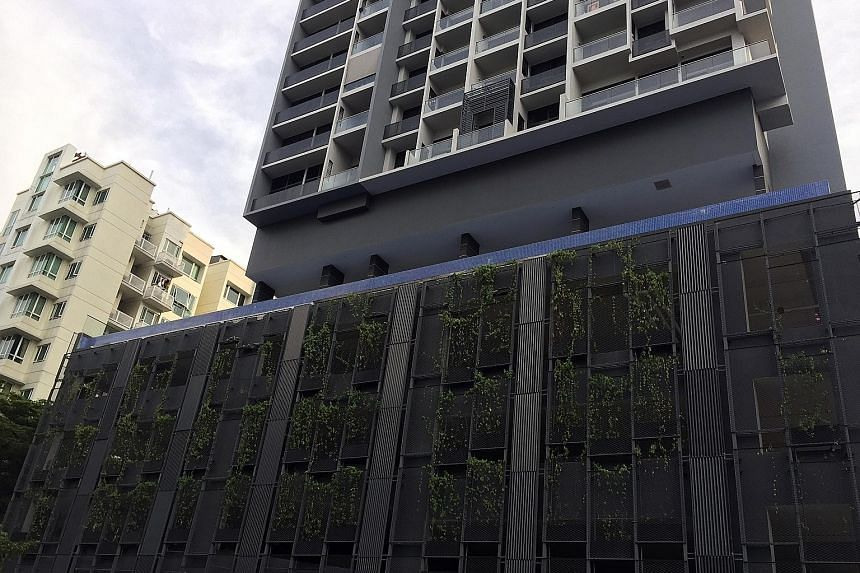 Glass panels in front of a fifth-storey infinity pool at the Cradels condominium in Balestier came crashing down last month, sending water raining to the ground. The BCA investigation found that water pressure had built up as a result of overflowing