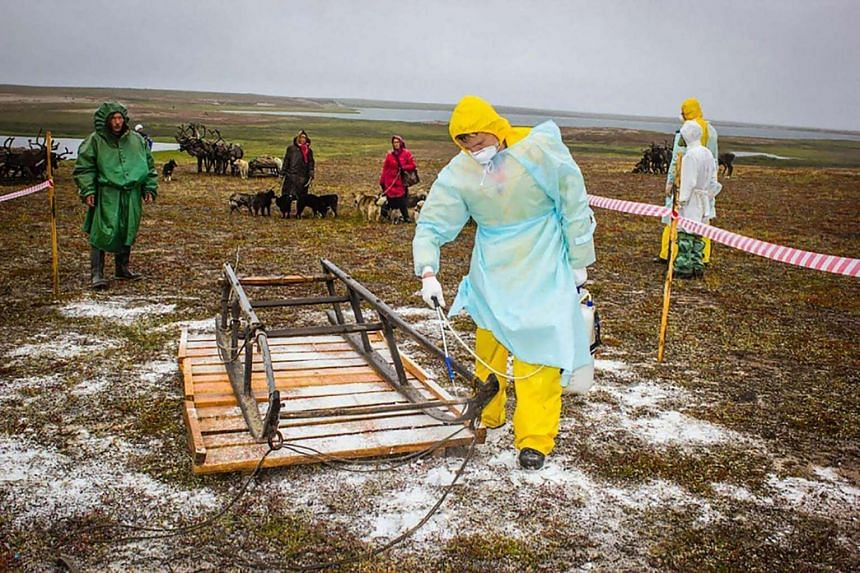 A sanitary assistant as he works up a sleigh outside Yar-Sale town at Yamal Peninsula in Russia.