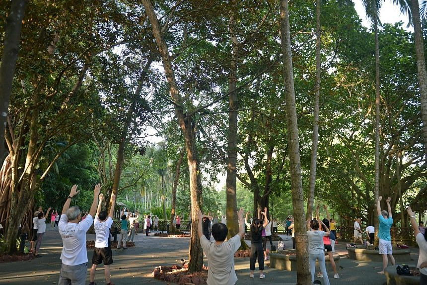 People doing deep breathing exercises at the Singapore Botanic Gardens, an example of a green space in the city that softens the tone of a built landscape and makes high-density urban environments more liveable. Contact with nature can also improve t