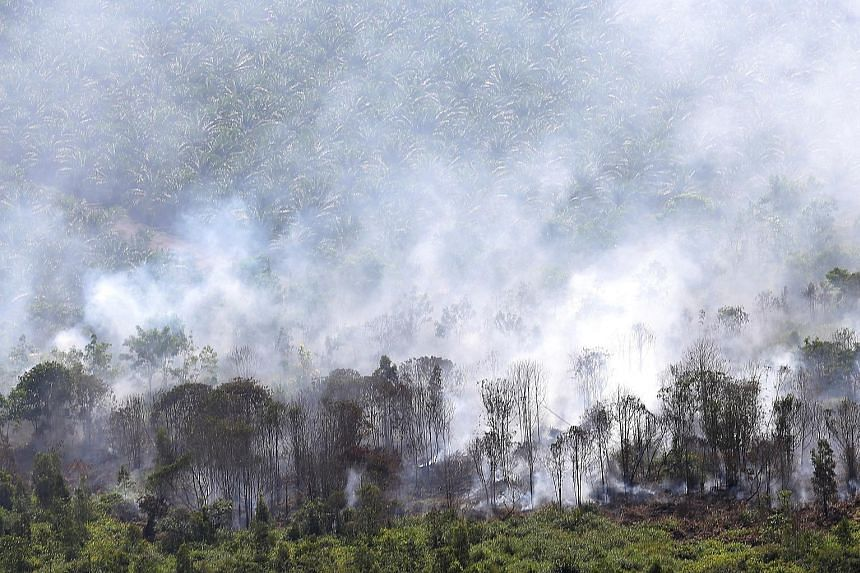 A fire burning in Musi Banyuasin regency in South Sumatra, Indonesia, on Monday. The region's annual haze, which typically starts in mid-August, has begun in West Kalimantan, with dozens of hot spots detected this week.