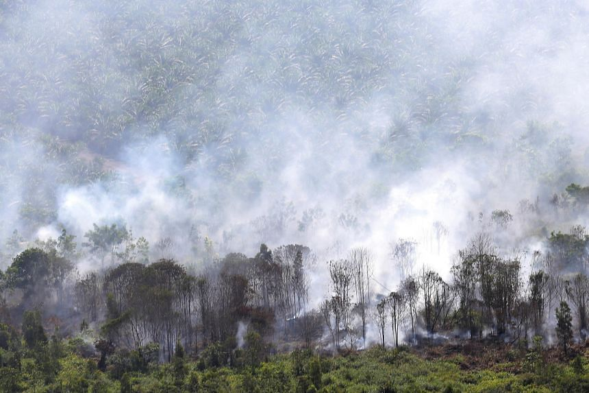 A view of a fire burning in Musi Banyuasin Regency, South Sumatra, Indonesia on Aug 8.