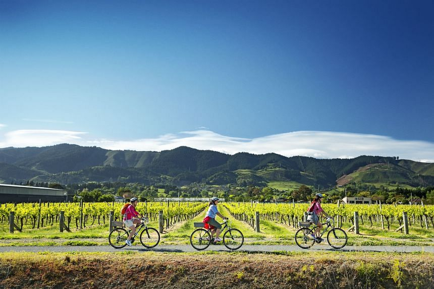 Go on a four-day (or less) cycling trail in Nelson, which is known for its gorgeous sunshine, delectable seafood, and fine wine and craft beer.