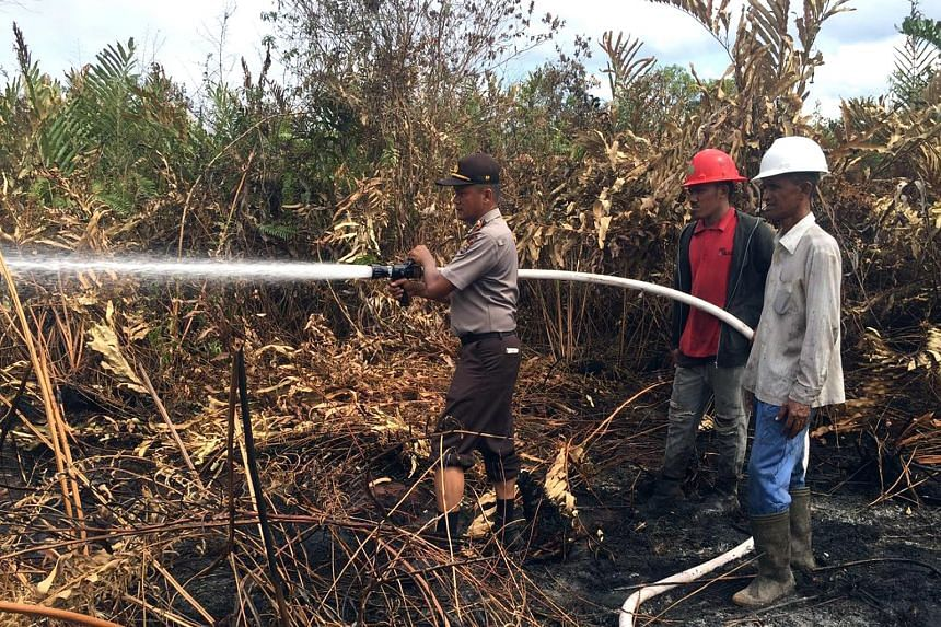 Firefighters in Indonesia helping to put out forest fires as the number of hot spots increases during the dry season. Big palm oil and pulp-and-paper firms, which had been partly blamed for last year's regional haze crisis, are joining the military,