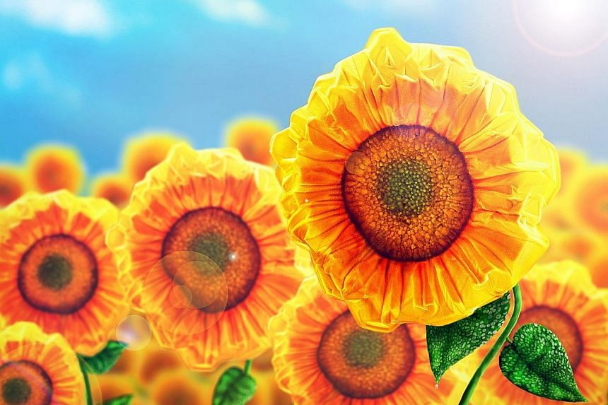 These sunflowers are made of perovskite crystals grown on a flat, clear and thin substrate called muscovite mica. The image was captured using a scanning electron microscope by PhD student Ha Son Tung, who was supervised by Professor Xiong Qihua, ass