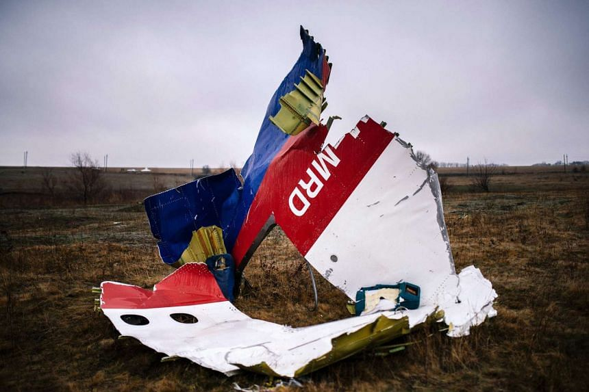 Parts of the Malaysia Airlines Flight MH17 at the crash site near the village of Hrabove (Grabovo) in 2014.