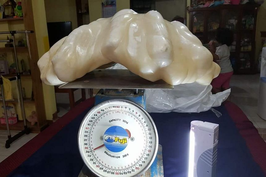 Tourism officer Aileen Cynthia Amurao said the pearl, found off the coast of Palawan, had been formed inside a giant clam.