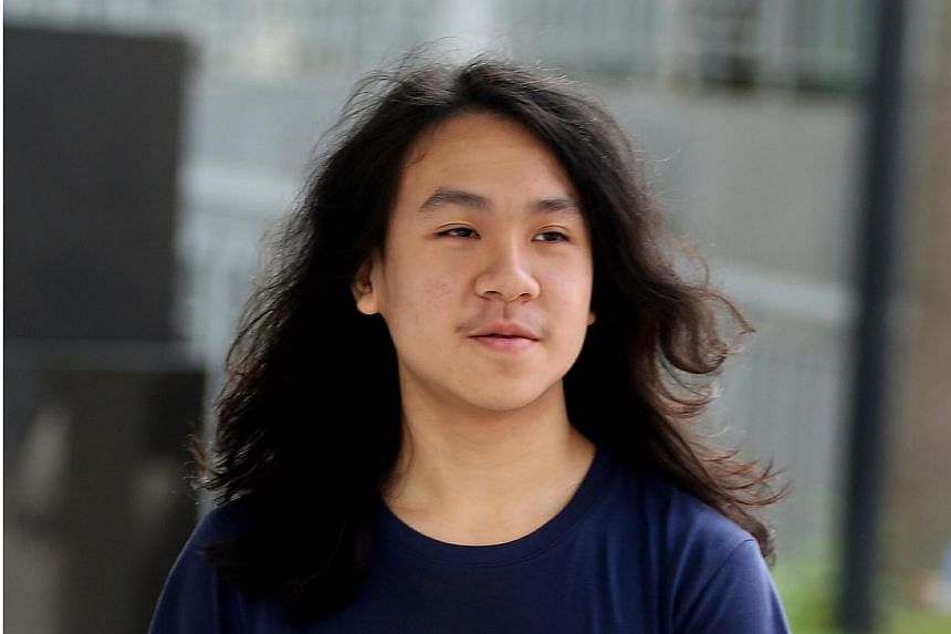 Teenage blogger Amos Yee has admitted to three counts of wounding religious feelings.