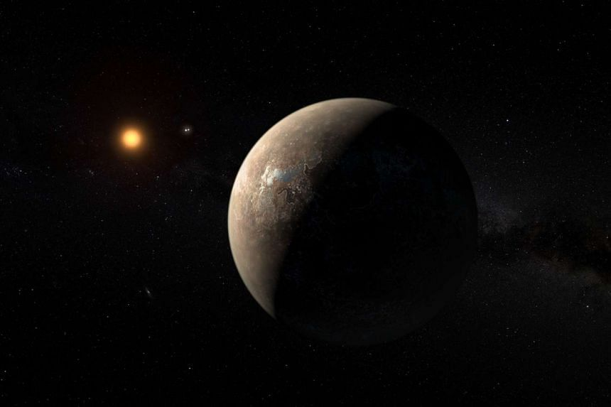 A European Southern Observatory handout shows an artist's impression of the planet Proxima b.