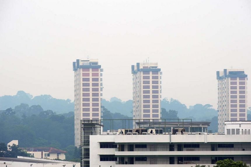 A view of the apartment blocks at Lakeview, in front of MacRitchie Reservoir.