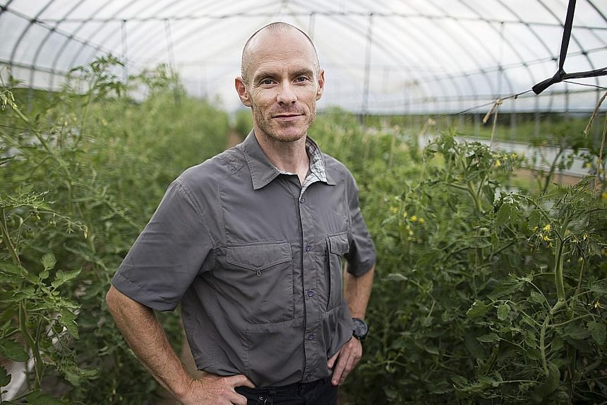 """Niseko Green Farm owner Ben Kerr started visiting the area for skiing in 1996. He then stayed for a summer and """"then decided to stay"""". His farm produces organic vegetables which are sold to local restaurants."""