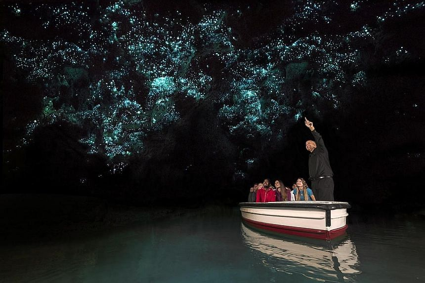 Viewing glow worms in the Waitomo Caves is included in the Northern Bay of New Zealand and Hobbiton tour by Tourism New Zealand and Air New Zealand.