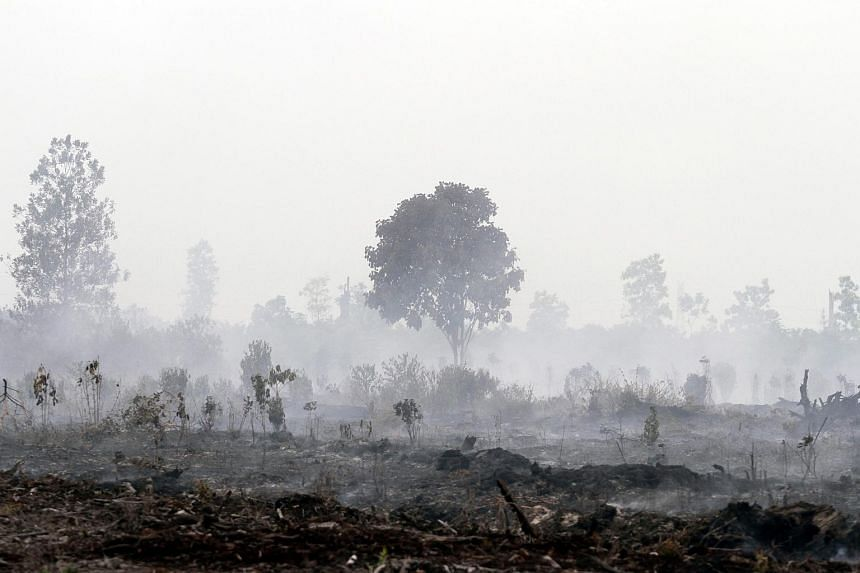 A general view of burning land in Kampar, Riau province, Indonesia on Aug 27, 2016.