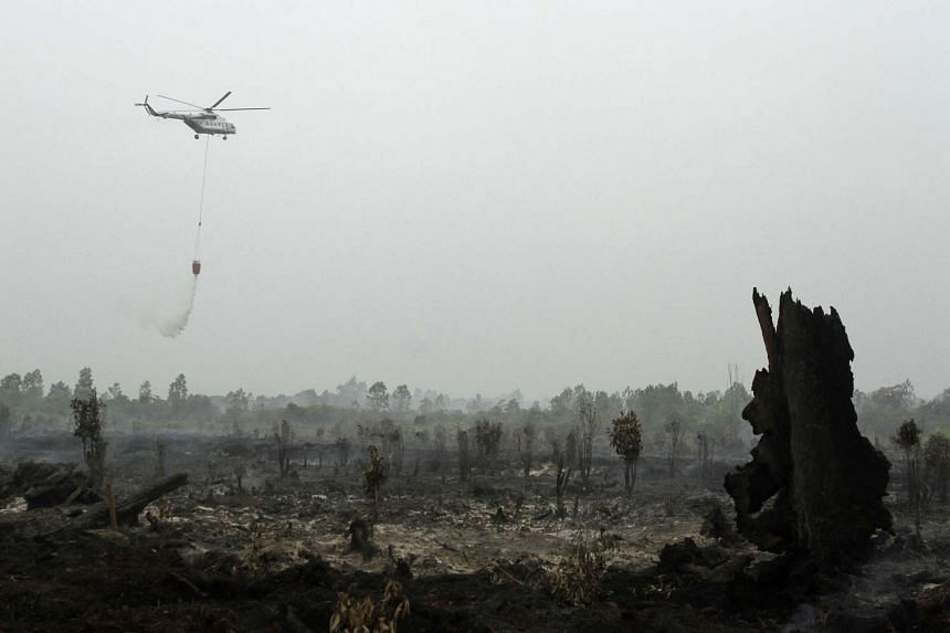 A helicopter operated by Indonesia's National Disaster Mitigation Agency (BNPB) sprays water on a fire in Kampar, Riau province on Aug 29, 2016.