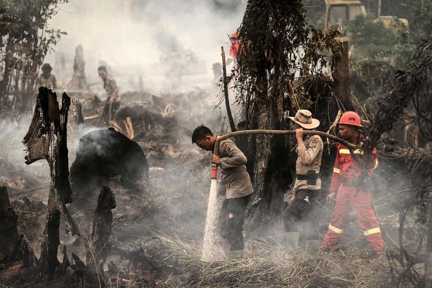 Indonesian police officers and firemen extinguish the fire at a forest in Rokan Hulu, Riau province, Indonesia, on Aug 29.