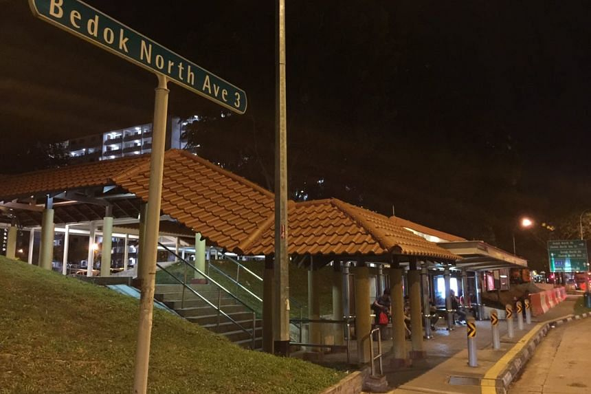 MOH also identified another potential Zika cluster at Bedok North Avenue 3, on Aug 31, 2016.