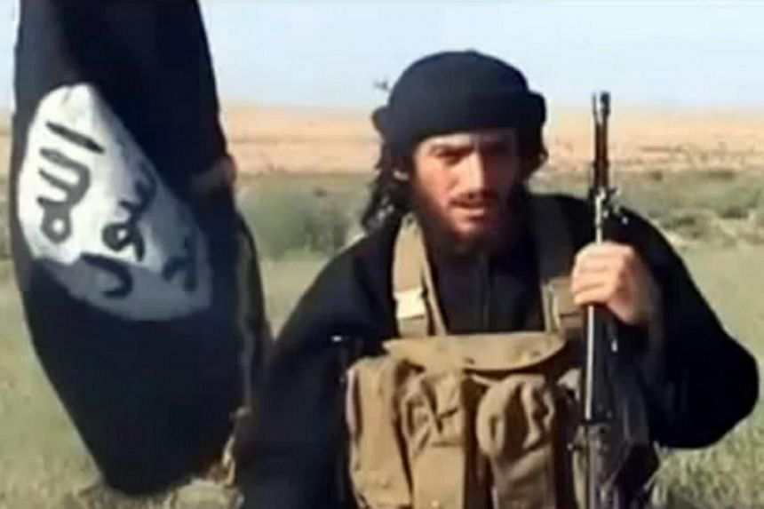 Russia's Defence Ministry said air strikes carried out by Russian planes killed key ISIS leader Abu Mohamed al-Adnani (pictured).