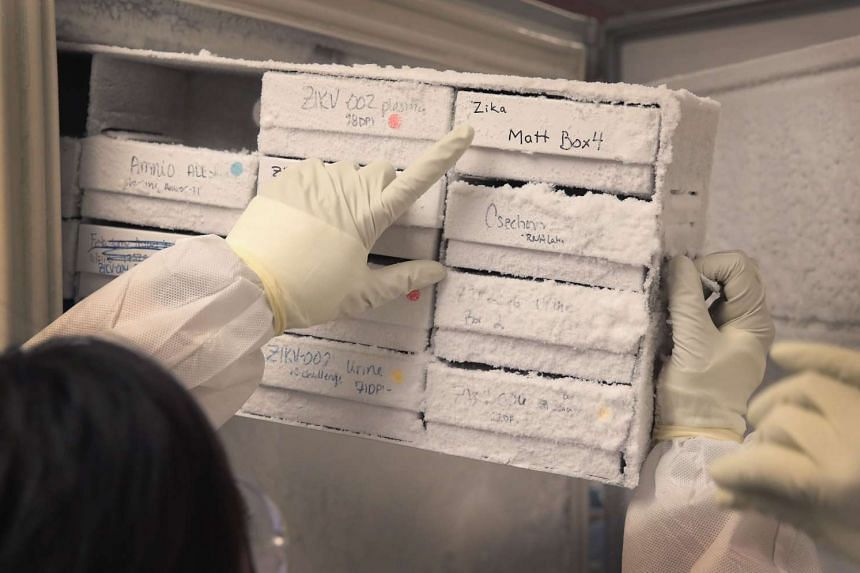 Researchers at the AIDS Vaccine Research Labs at the University of Wisconsin-Madison remove research samples from rhesus macaque monkeys infected with the Zika virus from a freezer on June 28 in Madison, Wisconsin.