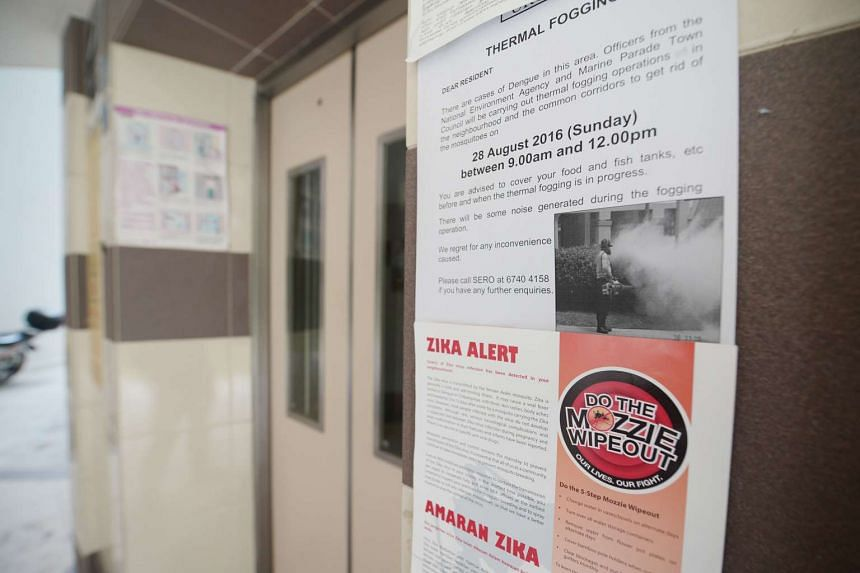 A pregnant woman was confirmed to be among the 31 new cases of Zika in Singapore.
