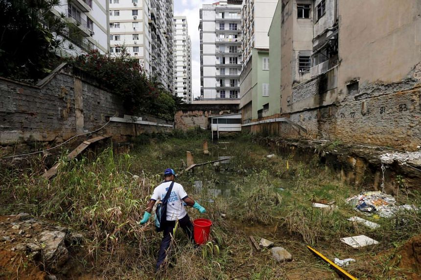 A health agent carrying a bucket of guppy fish to place them in standing water to consume larva of Zika-transmitting mosquitoes in an empty lot of Rio de Janeiro's Tijuca neighborhood, Brazil, on Feb 17, 2016.