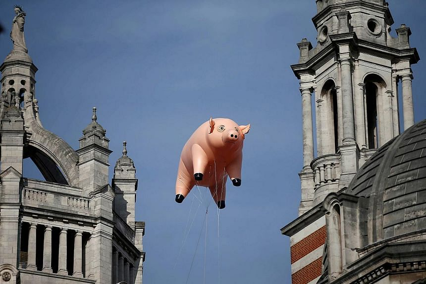 The inflatable pig floating above the Victoria and Albert Museum in London.