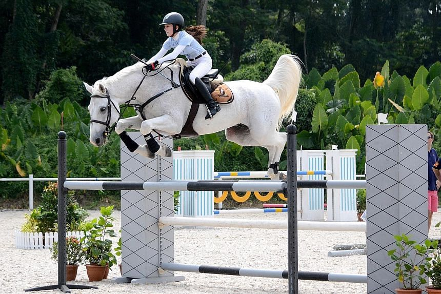 Watch a showjumping competition at the Singapore Horse Show.
