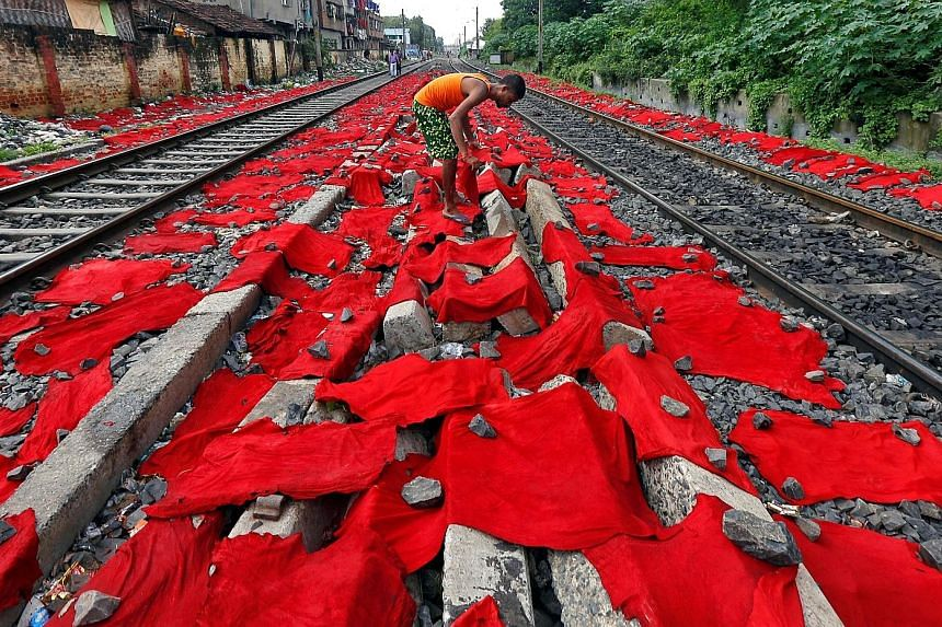 A tannery worker laying out dyed cattle skins for drying between railway tracks in Kolkata, India, yesterday. Cow skins are later treated with chemicals to make leather goods, while buffalo skins are used in machinery. Hundreds of small, family-owned