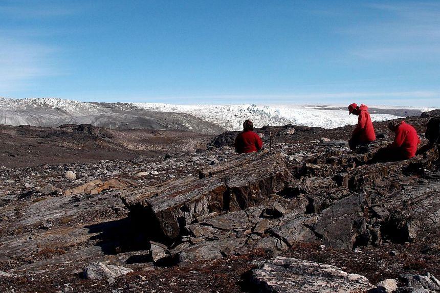 Australian scientists examining rocks in Greenland, where the stromatolite fossils were found four years ago.