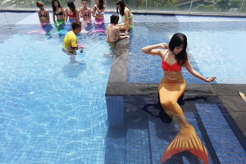 Finalists of the Miss Mermaid Singapore 2016 will wear mermaid tails made of polycarbonate with a neoprene cover.